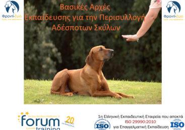 Εκπαίδευση για την Περισυλλογή Αδέσποτων Σκύλων